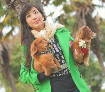 川島なお美の犬の画像