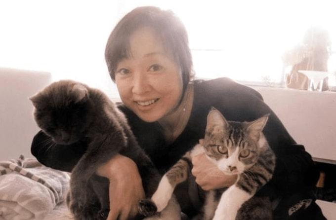 川上麻衣子と猫の画像